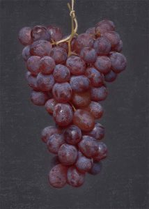 Red Grapes II, oil on linen, by Conor Walton